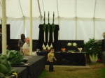 View of the giant vegetables at the New Forest Show 2011