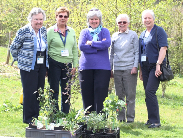 Anne Folkes, Gill Ringrose, Clare Hogan, Ann Hare, Sandra Tognarelli