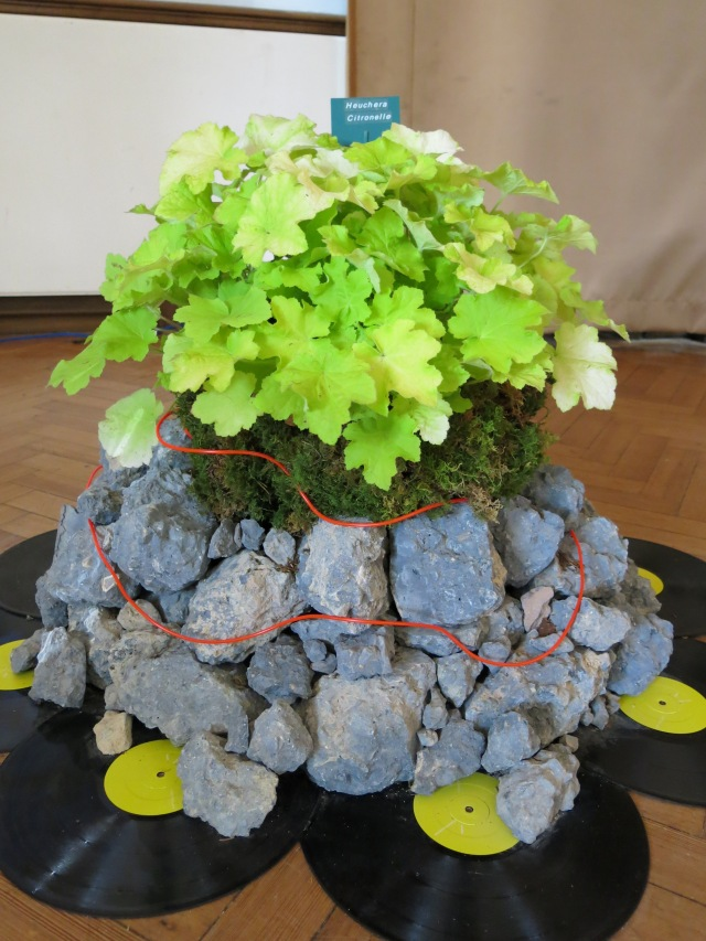 Heuchera display by Vicky and Richard Fox from Plantagogo, in conjunction with designers Cityscapes