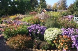 Picton garden 1