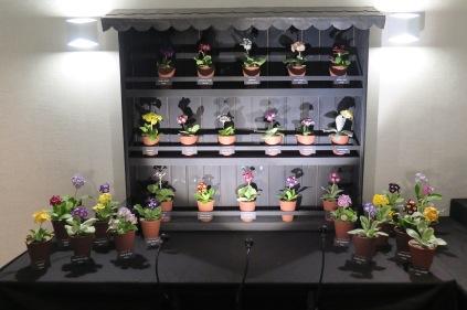 Drointon Nurseries display