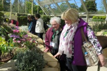 Members admiring plants at Harlow Carr