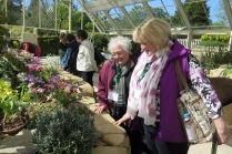 Members admiring plants at Harlow Carr