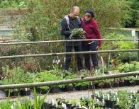 Members admiring plants at Stillingfleet