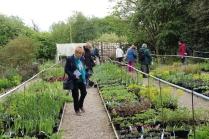 Members admiring plants in the nursery